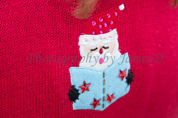 2015_GB_Christmas_Parade_20151205-87