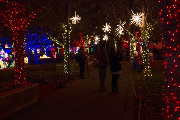 "Albuquerque BioPark ""River of Lights"""
