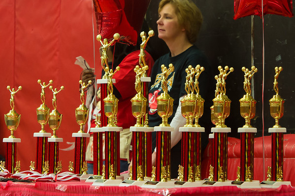 Sparks Cheerleading Competition- 1.19.14