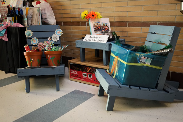 Classroom Auction Projects