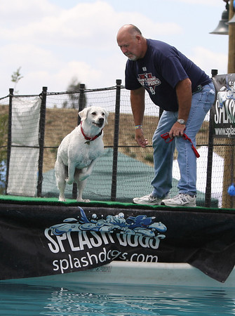Splash Dogs! Rancho Cucamonga California!