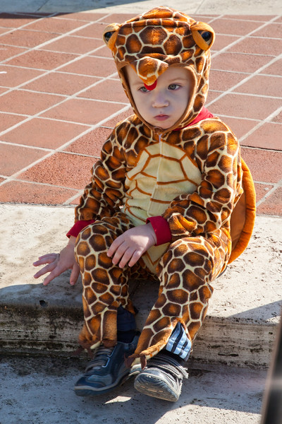 The 2011 Spooky Pooch Parade @ the CBG