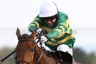 Punchestown Festival 2014