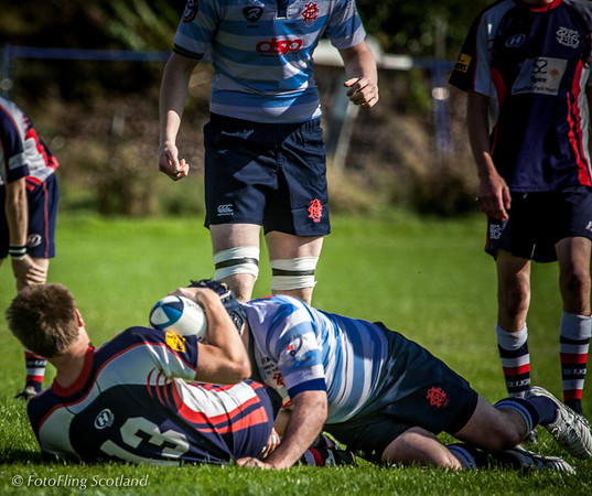 Do you want the ball or not ? Edinburgh Accies 2nd XV  v Selkirk