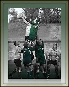 Edinburgh Accies v Hawick RFC