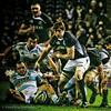 Scotland v Argentina
