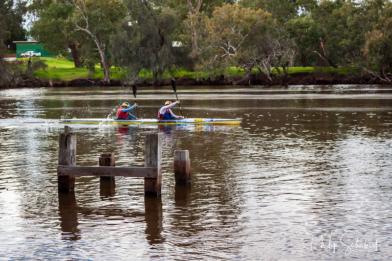 Guildford, Australia - Aug 5 2012: Competitors in the annual Avon Descent White Water Race paddle in the calm waters of the Swan River near the finish line.