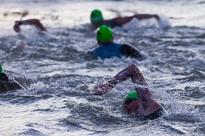 An Ironman Louisville 2016 contestant swimming near the start of the swimming portion of the race. The Ironman Louisville 2016 took place on 10-9-16 and is the 10th anniversary of the race occuring yearly in Louisville, Kentucky.