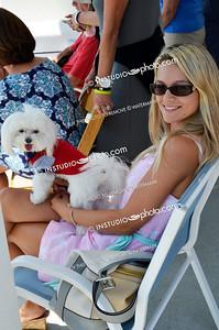 _PMC4241x dog