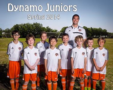 Dynamo-Spring2014-TeamPic