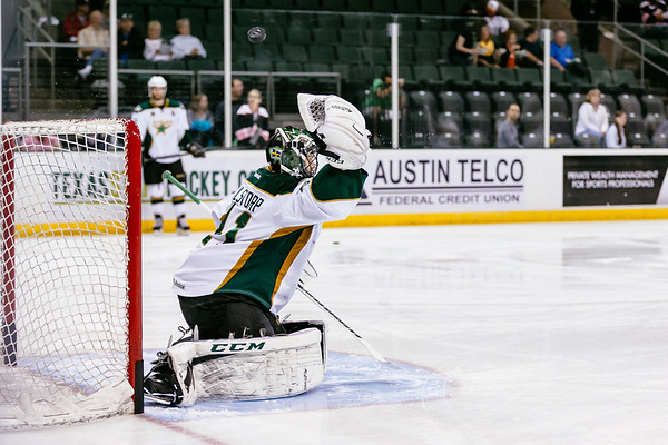 Texas Stars vs Toronto Marlies at Cedar Park Center - June 2, 2014 - Marlies win 3-1