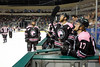 Texas Stars vs Chicago Wolves, February 18, 2017