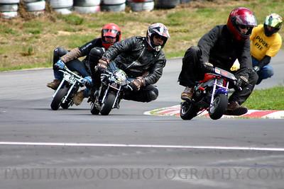T Woods Mini Bikes 01