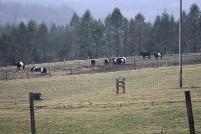 Purdy & Sons + Local Farm Tours