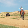 young boy on horse rides away on road towards cow