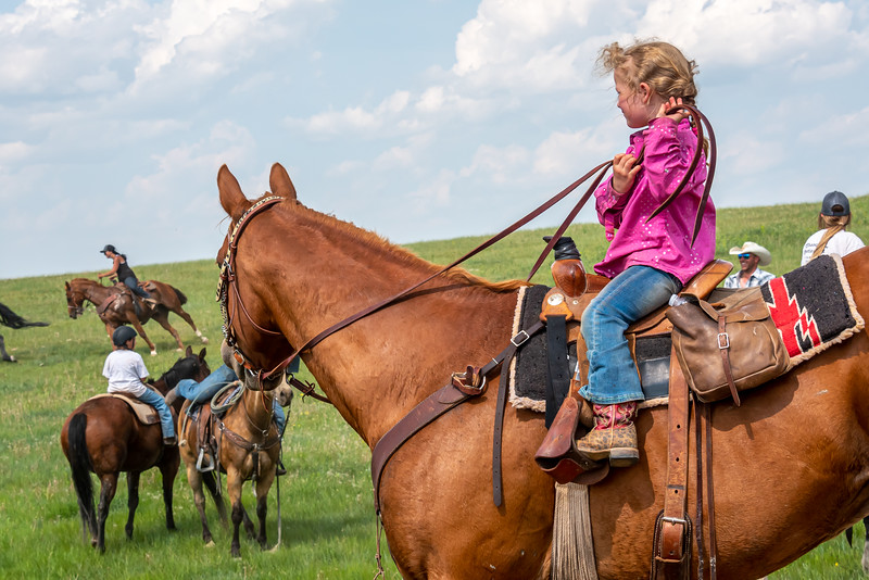 Little cowgirl in pink on horse