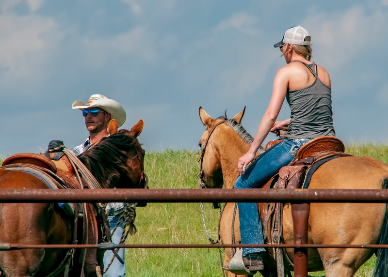 roundup cowboy faces his horse cowgirl in saddle