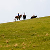 round up three young riders ride over the hill