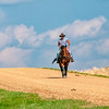roundup lone cowboy on gravel road