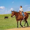 young boy on horse looks to branding area
