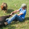 Girl holds calf hind legs