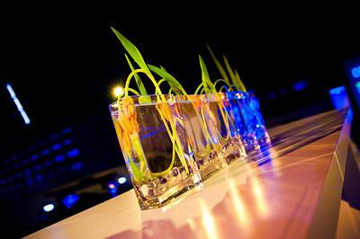Springbox-SXSW-2011-Party-12