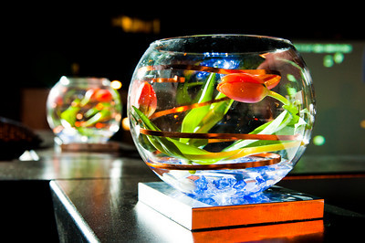 Springbox-SXSW-2011-Party-15