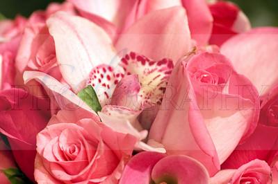 Pink Potpourri