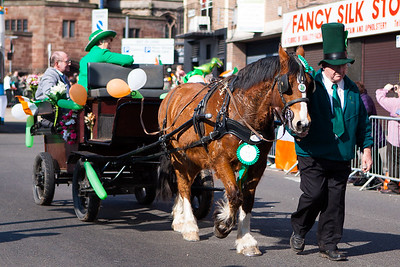 Horse & carriage in the Birmingham St. Patricks Festival Parade