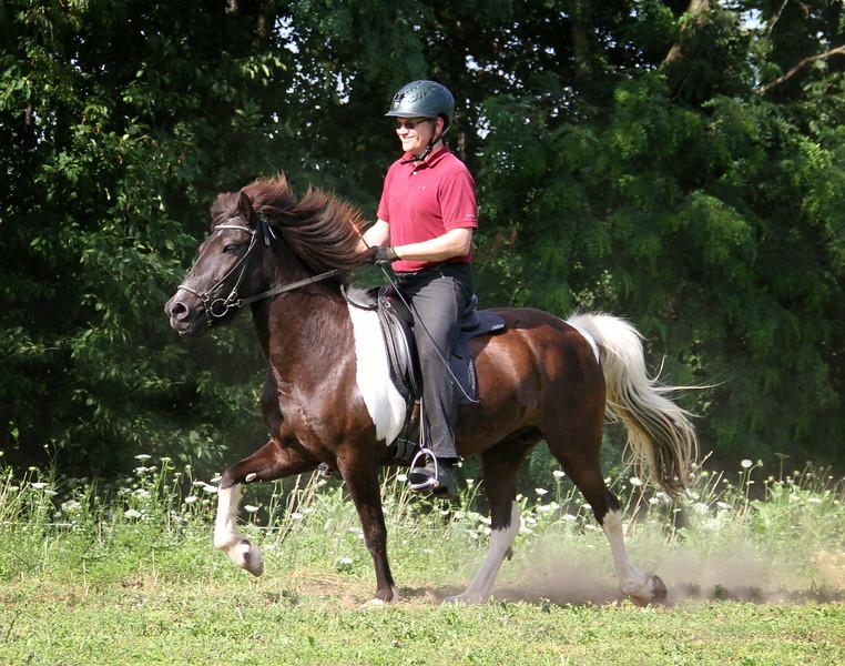 Steven Barber riding Gima frá Ytra-Dalsgerði