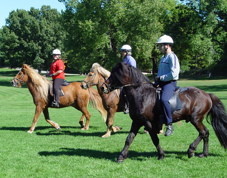 <br>Drill team practice:  Andrea on Vikingur, Cordy on Lysingur, and Steve on Kalman <br><br><i>photo:  Larry Sher</i>