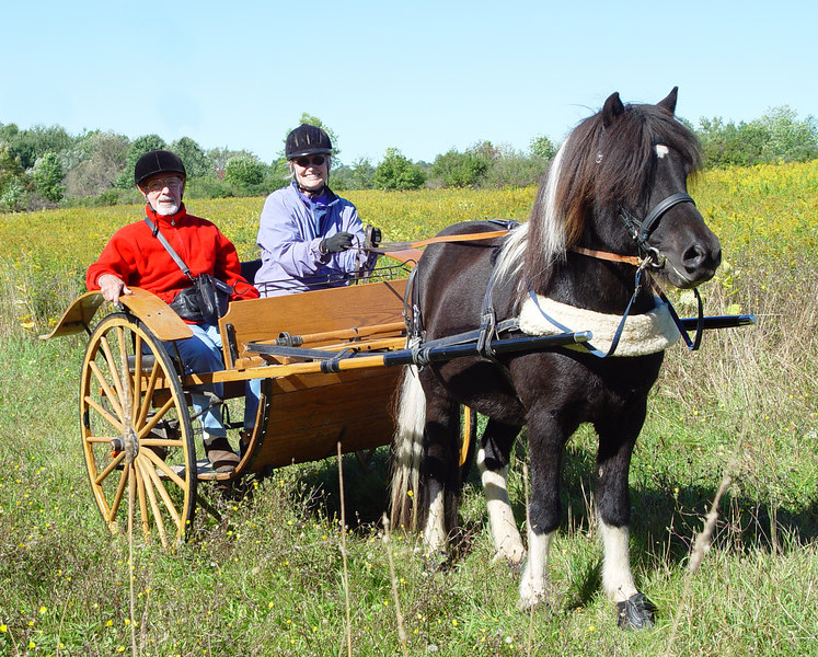 <br> Larry and Stephanie driving Flygill <br><i>photo:  Unknown</i>