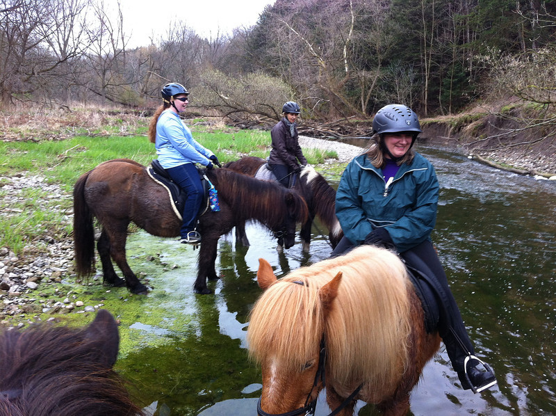 In the stream - Andrea/Vikingur, Elisa/Tinna, JoAnne/Flygill (<i>photo:  Steve Barber</i>)