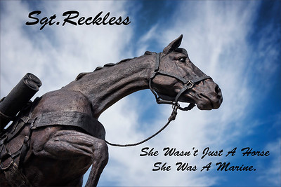 _DSC1730 Sgt Reckless quote