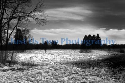 stark_parks_tos_12_29_barath_2013_24