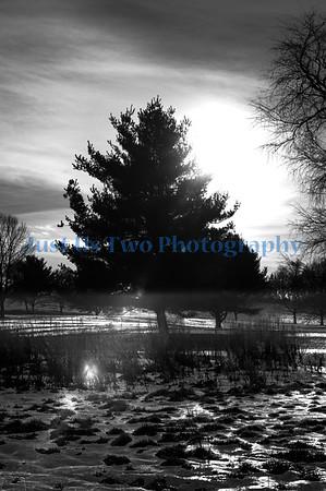 stark_parks_tos_12_29_barath_2013_23