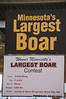 "Minnesota's largest boar for 2007 was named ""Pretty Ricky"""