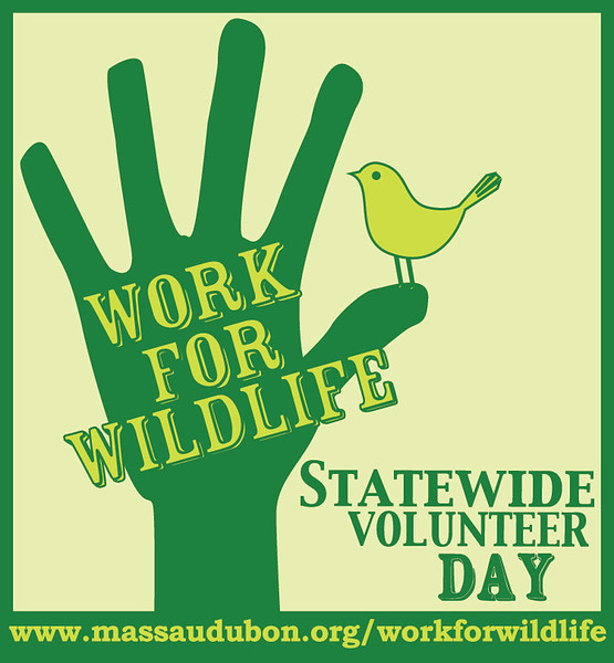 Welcome to Mass Audubon's 2017 Statewide Volunteer Day!