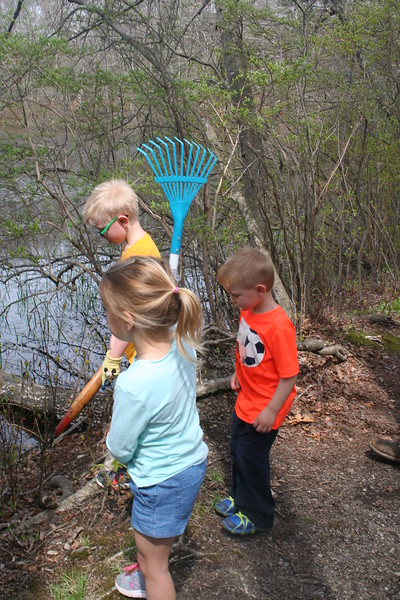 Rakes are the tools of choice for experienced volunteers.