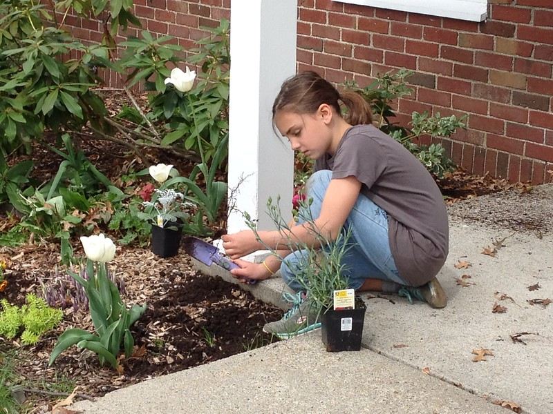 Spring is the perfect time to plant new annuals and perennials.