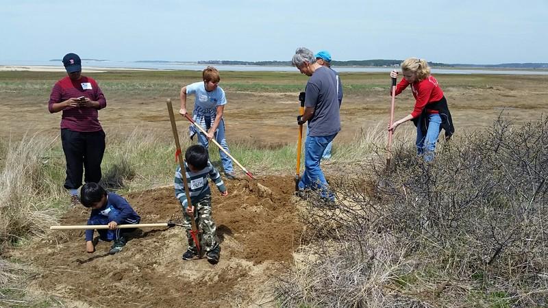 Volunteers prep turtle gardens for the summer nesting season.