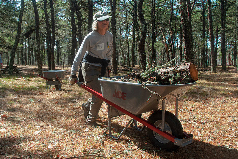 Wellfleet Bay volunteers remove brush and branches from campgrounds and picnic areas.