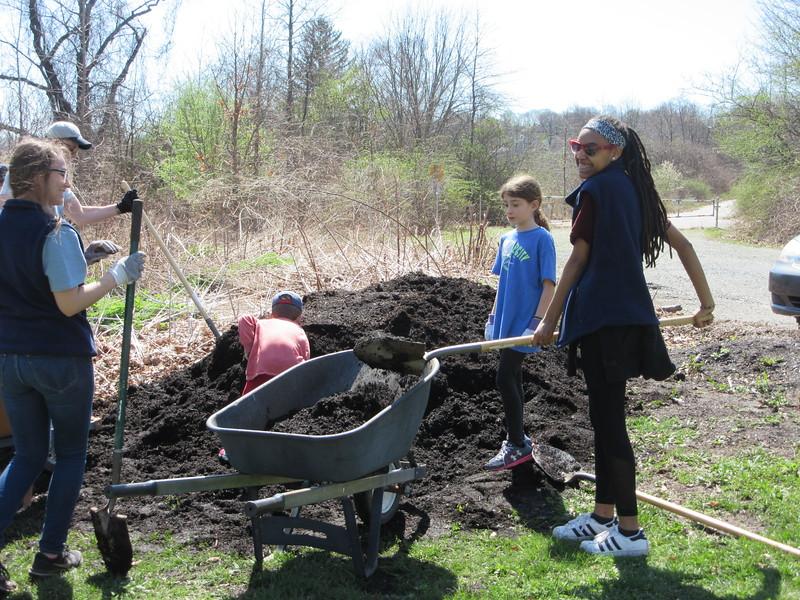 Shovels full of compost enhance the community gardens at Boston Nature Center.