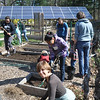 They cleaned and prepped 44 garden beds, getting them ready to plant vegetables, butterfly-attracting flowers, and herbs,