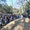 Some volunteers were dispatched from a mountain of woodchips (105 yards total) . . .