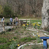 and set to work -- transforming the spring landscape before them.