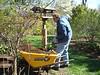 mulching,