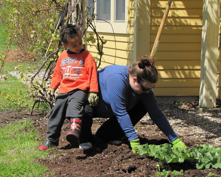 planting,