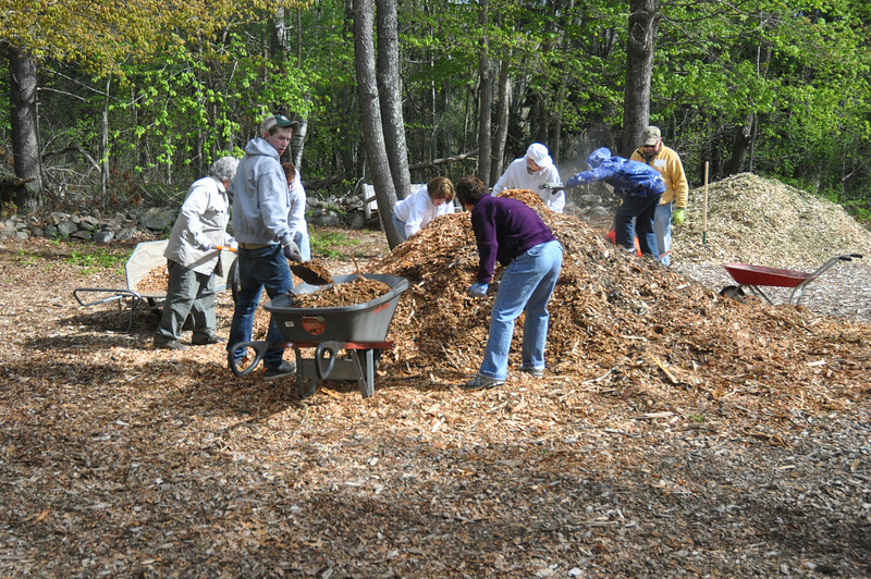 In just one morning, we accomplished an unbelievable amount. In fact, we literally moved mountains (of mulch) -- 146 cubic yards in all!