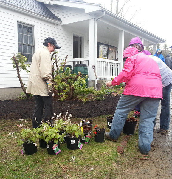 There were almost as many green thumbs as there were rain slickers.